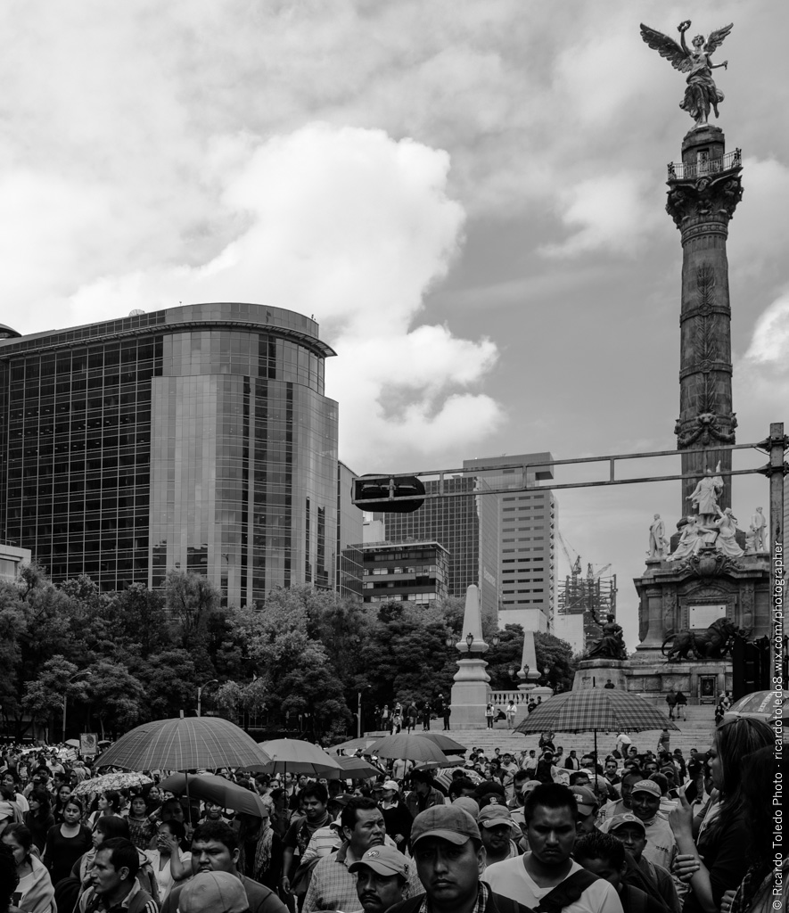 Government: Paseo De La Reforma